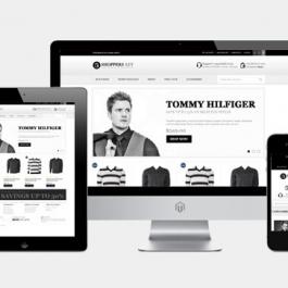Création de site E-commerce CSLH